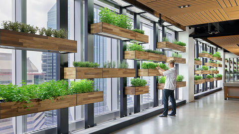 Comcast Technology Center herbs in cafeteria